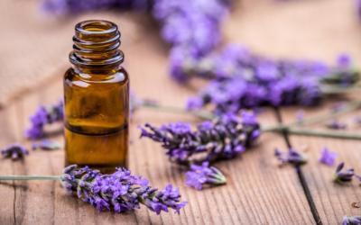 doTERRA Lavender Lavendelöl